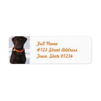 Chocolate Labrador Retriever Mailing Label