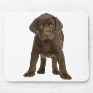Chocolate Labrador Retriever Puppy Dog Mousepad