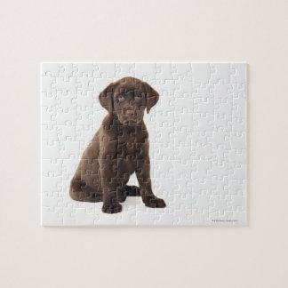 Chocolate Labrador Retriever Puppy Jigsaw Puzzle