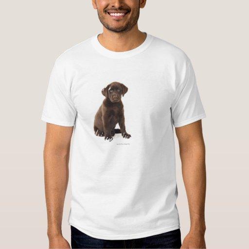 Chocolate Labrador Retriever Puppy T-Shirt