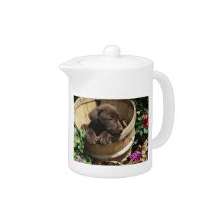 Chocolate Labrador Retriever Puppy Teapot at Zazzle