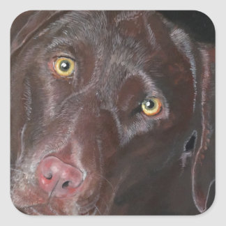 Chocolate Labrador Square Sticker