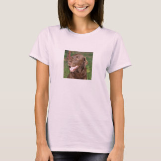 Chocolate Labrador T shirt