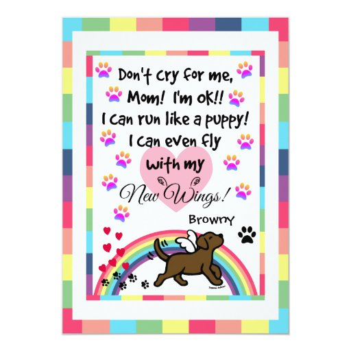 Chocolate Labrador Trotting Memorial Card