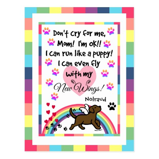 Chocolate Labrador Trotting Memorial Postcard