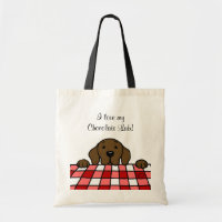 Chocolate Labrador watching you bag