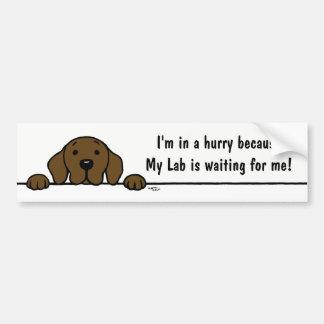 Chocolate Labrador watching you Bumper Sticker
