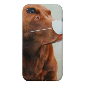 Chocolate Labrador Wearing a Fake Nose iPhone 4/4S Cases