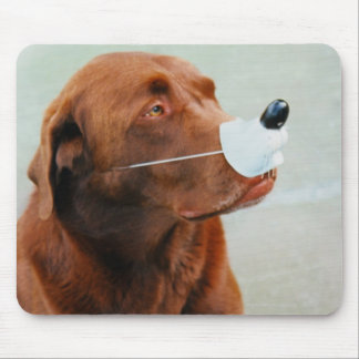 Chocolate Labrador Wearing a Fake Nose Mouse Pad