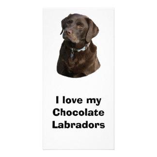 Chocolate Labradors dog photo Customized Photo Card