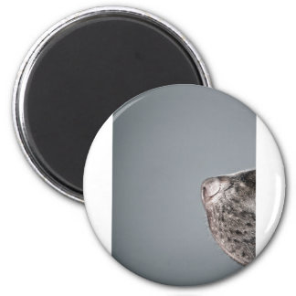 Chocolate Labrador's Nose 2 Inch Round Magnet