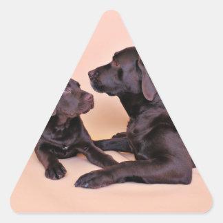 Chocolate Labradors Triangle Stickers