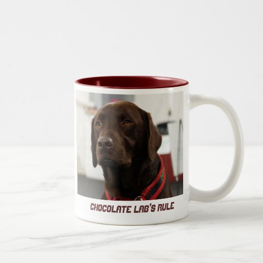 Chocolate Lab's Rule Two-Tone Coffee Mug