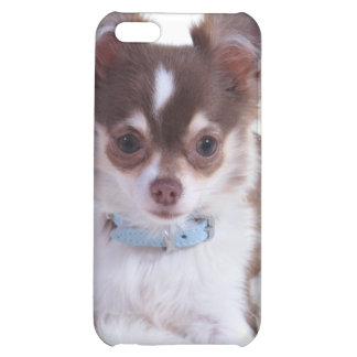 Chocolate Longhaired Chihuahua iPhone 4 Case