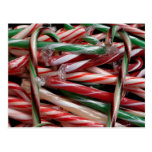 Chocolate Mint Candy Canes Postcard