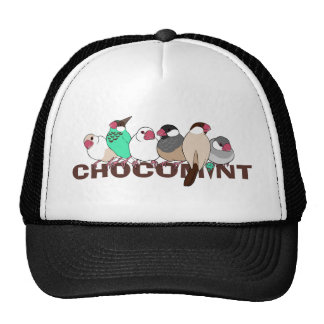 Chocolate mint java sparrow trucker hat