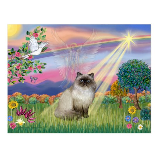 Chocolate Point Himalayan Cat -  Cloud Angel Postcard