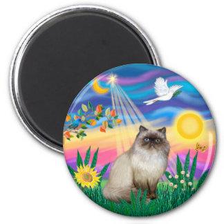 Chocolate Point Himalayan Cat  - Twilight Magnet