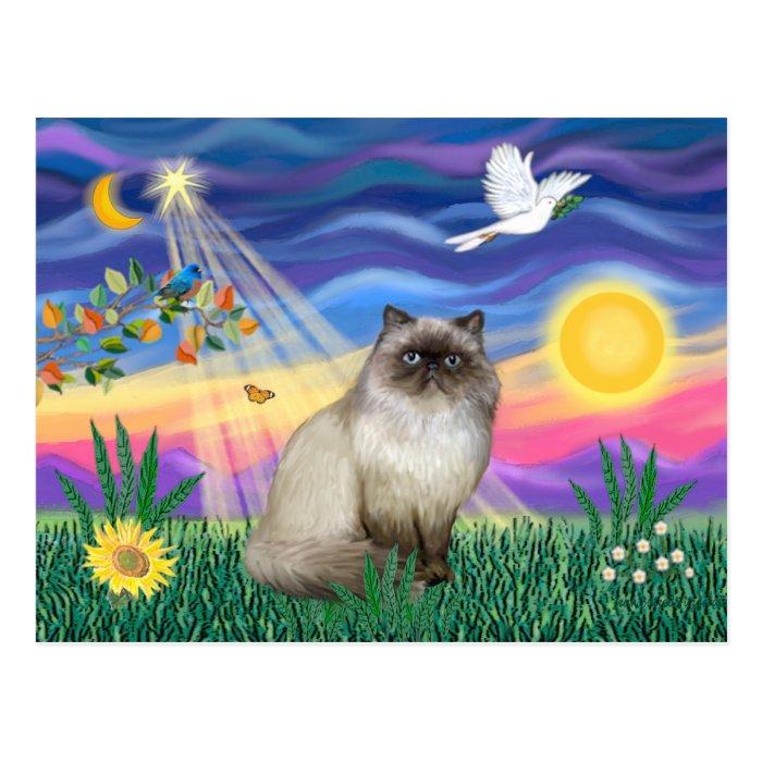 Chocolate Point Himalayan Cat  - Twilight Postcard