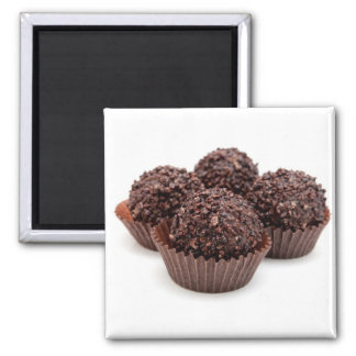 Chocolate Pralines Isolated on White 2 Inch Square Magnet