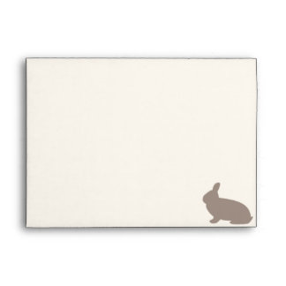 Chocolate Rabbit with light Pink Background Envelope