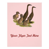 Chocolate Runner Duck Family Flyer