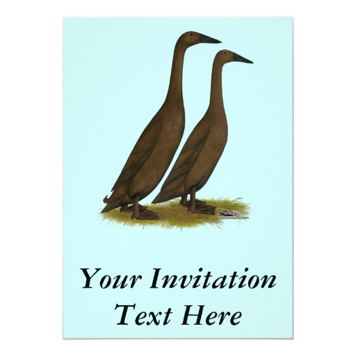 Chocolate Runner Ducks Card