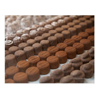 chocolate shop store display of chocolate postcard