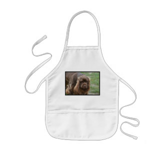 Chocolate Sussex Spaniel Aprons