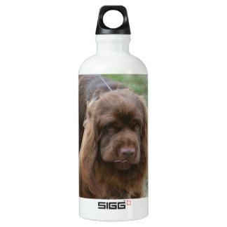Chocolate Sussex Spaniel SIGG Traveler 0.6L Water Bottle