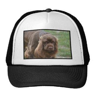 Chocolate Sussex Spaniel Trucker Hat