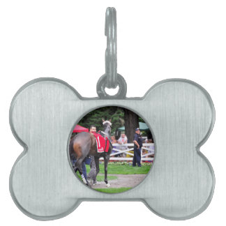 Chocolate Wildcat in the 100th Sanford Stakes Pet Name Tag