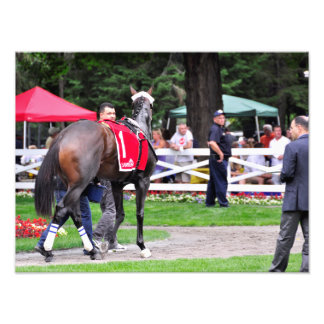 Chocolate Wildcat in the 100th Sanford Stakes Photo Print