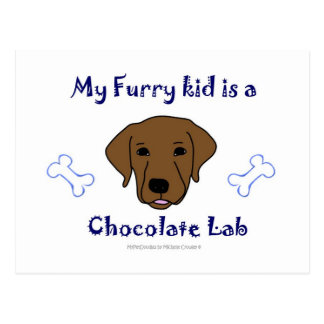 ChocolateLab Postcard