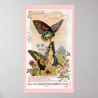 Chocolates y poster de las mariposas