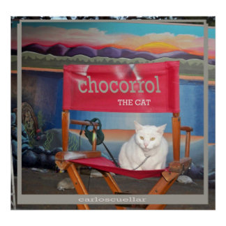 chocorrol el gato póster