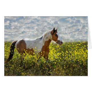 Choctaw Horse in mustard Plants Card