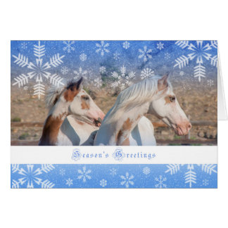 Choctaw Mare and Foal - 5x7 Holiday Card