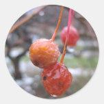 Choke cherry classic round sticker