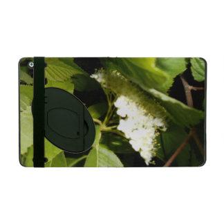 Chokecherry Blossoms iPad 2/3/4 Case w/Kickstand iPad Cases