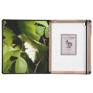 Chokecherry Blossoms iPad 2/3/4 DODOcase iPad Case