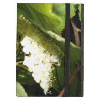 Chokecherry Blossoms iPad Air Case