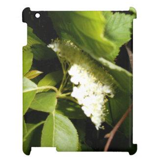 Chokecherry Blossoms iPad Case