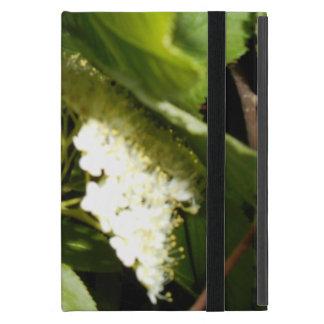 Chokecherry Blossoms iPad Mini Case