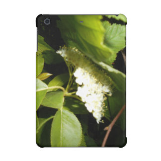 Chokecherry Blossoms iPad Mini Retina Case