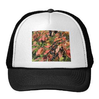 Chokecherry Bush Trucker Hat