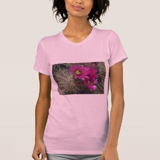 Cholla Cacti Tshirts