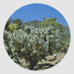 Cholla Cactus And Flowering Yucca flowers Round Sticker