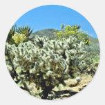 Cholla Cactus And Flowering Yucca Round Sticker