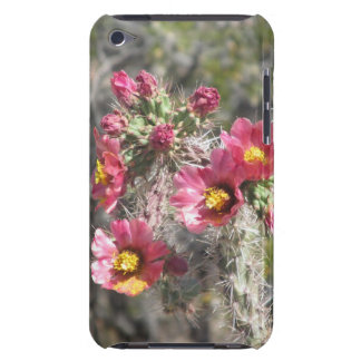 Cholla Cactus Blooms iPod Touch Case